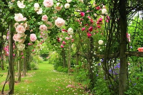 Letni relaks w ogrodzie