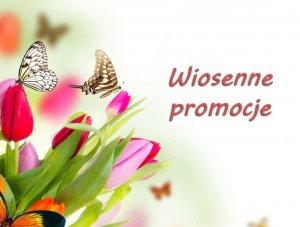 15535951638899_aktualn-wiosna